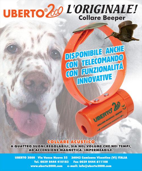 Company Uberto2000