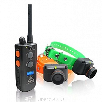 Collare beeper+add. con TX Dogtra 2502 T&B